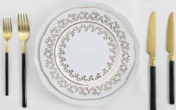 Rental Dishes for a Party